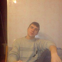 Николай, 30 лет, Царичанка