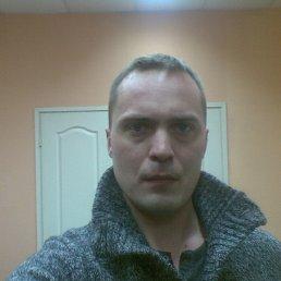 Илья, 43 года, Сергиев Посад