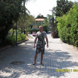 Роман, 39 лет, Александров