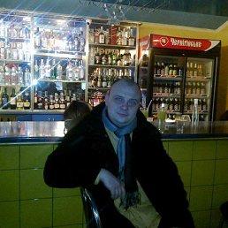 Александр, 41 год, Шепетовка