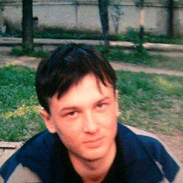 mistr, 27 лет, Камбарка
