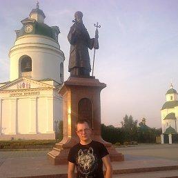 Тарас, 25 лет, Бердичев