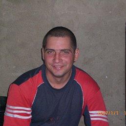 Николай, 36 лет, Питерка