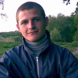 Vova, 31 год, Яготин