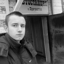 Андрей, 20 лет, Пошехонье