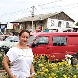 Оксана, 44 года, Березовка