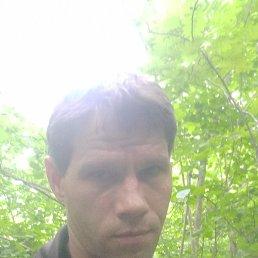 Макс, 36 лет, Можайск