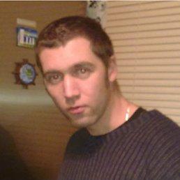 Алексей, 37 лет, Дрезна