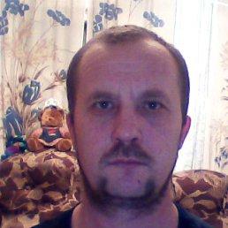 Николай, 47 лет, Петухово