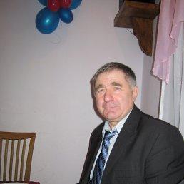 Леонид, 67 лет, Олевск