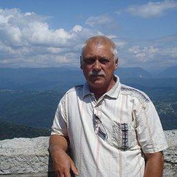 Владимир Карпов, 64 года, Красный Кут