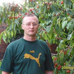 Сергей, 43 года, Ейское Укрепление