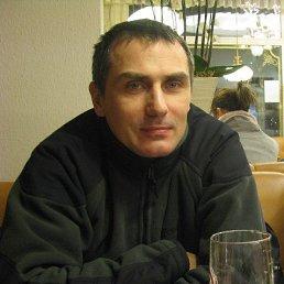 Максим Кононов, 53 года, Санкт-Петербург