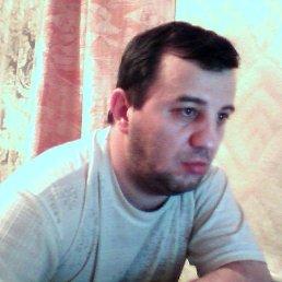 Фото Владимир, Кемерово, 52 года - добавлено 10 ноября 2011