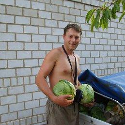 ura, 49 лет, Голованевск