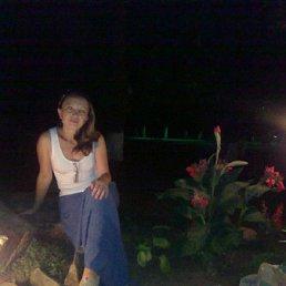 Марина, 43 года, Кировск