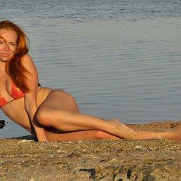 Wega, 35 лет, Москва - фото 3