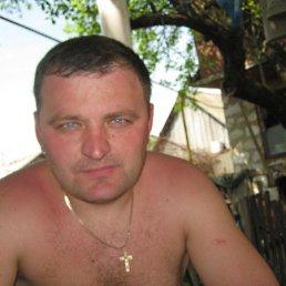 Александр, 39 лет, Короп