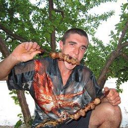 Вова, 27 лет, Берислав