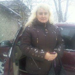 Лилия, , Красноармейск