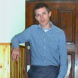 Фото Алексей, Атаманская, 39 лет - добавлено 4 декабря 2012