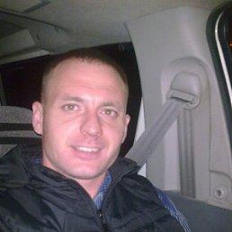 Роман, 39 лет, Калачинск