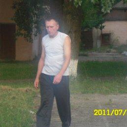 Сергей, 55 лет, Помошная