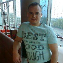 Александр, 34 года, Кураган