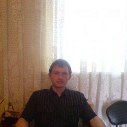 володимир, 29 лет, Берислав
