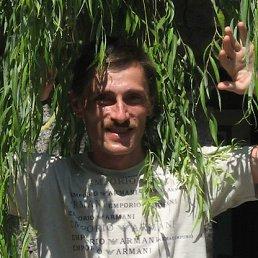 Владимир, 52 года, Городок