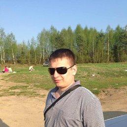 Артём, 30 лет, Пересвет