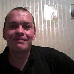андрей, 44 года, Рязань