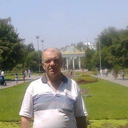 Анатолий, 64 года, Алма-Ата