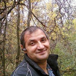 Александр, 52 года, Снежное