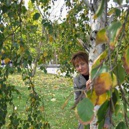 Елена, 55 лет, Чигирин