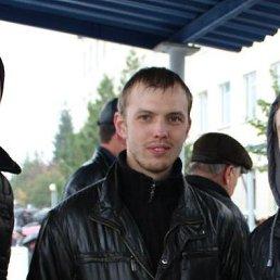 Сергей, 29 лет, Гвардейское