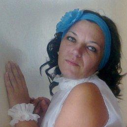 Людмила, 41 год, Дмитриев-Льговский
