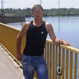Александр, 43 года, Берислав