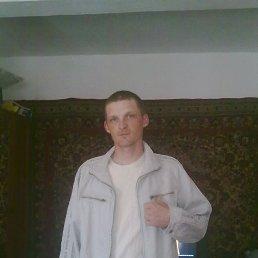 Андрей, 33 года, Корец