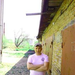 Сергей, 43 года, Краснозаводск