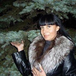 Александра Демиденко, 50 лет, Сочи