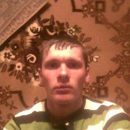 Олександр, 27 лет, Олевск