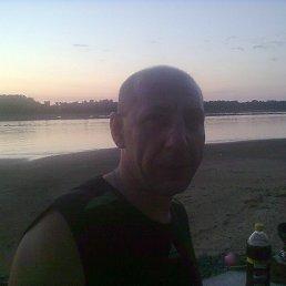 Алексей, 49 лет, Советск