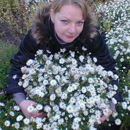 Виталина, 29 лет, Нежин