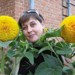 Ольга, 45 лет, Карловка