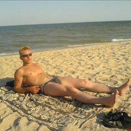 Макс, 34 года, Днепропетровск - фото 5