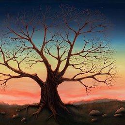 Хочешь создать такое дерево? Украсить по своему, сделав его уникальным? Тогда тебе сюда: http://vk.com/love.tree