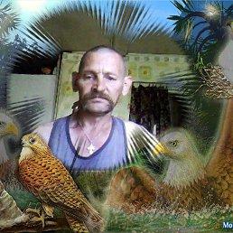 ВАЛИК, 57 лет, Велиж