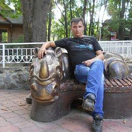 Николай, 41 год, Гребенка