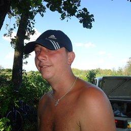 алекс, 34 года, Узин